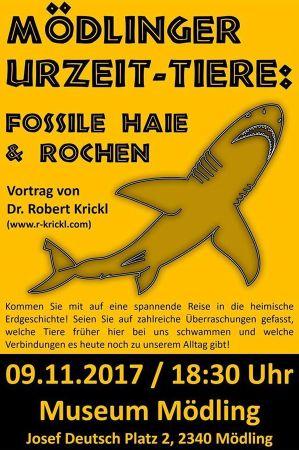 Fossile Haie und Rochen - aus Mödling!