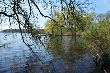 b_450_450_16777215_00_images_deutschland_niedersachsen_oldenburg_zwischenahner-meer-2.jpg