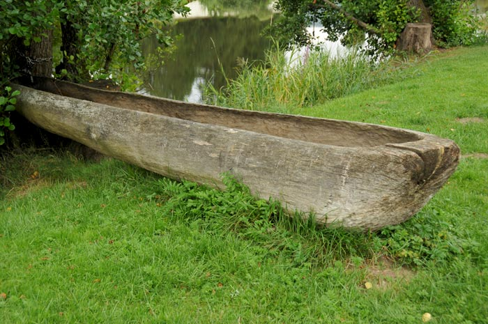 Canoe carved into Tree