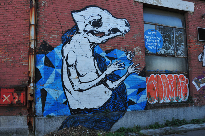 Back to the Camping Center Belgrade - street art on the way