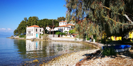 Kato Gatzea on Pelion - fishing village between olive groves