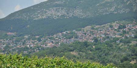 Rapsani: wine-growing region on the slopes of Mount Olympus
