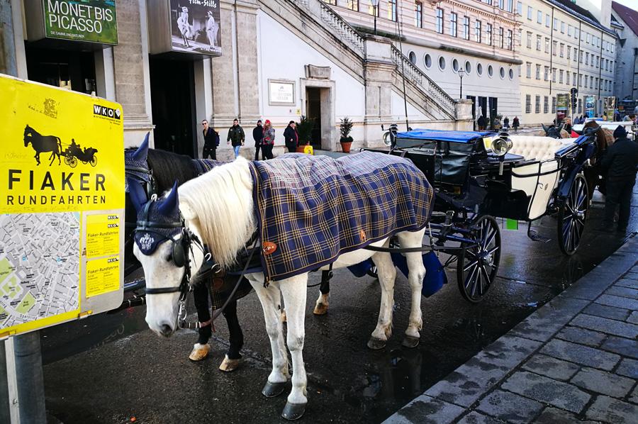 Клімкін у рамках саміту ОБСЄ у Відні провів зустріч із Лавровим. Головне питання - звільнення заручників - Цензор.НЕТ 5638