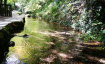 Day trip to Vevčani - walk along the watercourses
