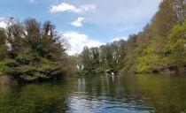 Relaxing boat trip on the spring lake near Sveti Naum