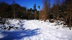 Winterlicher Spaziergang im Naturpark – Westliche Wälder