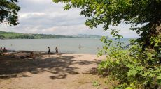 Walk on Lake Murten - oaks and pines line the beach