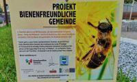 Thalheim – Projekt Bienenfreundliche Gemeinde