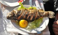 Delicious trout in the Kelmend Valley - a culinary delight