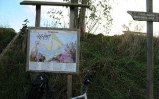 Staranzano - Fahrradtour im Naturreservat Foce dell`Isonzo