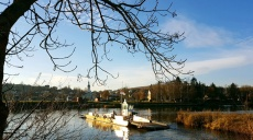Walk along the Main river Main - Albertshofen / Mainstockheim