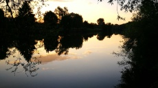 Walk along the Neckar - restoration shows success