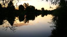 Spaziergang entlang des Neckar - Renaturierung zeigt Erfolge