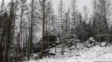 Eiskalter Brocken - Wanderung zum Blocksberg