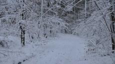 Wanderung über die Finne von Billroda kommend