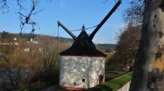 Trier - Entlang der Mosel zu den Alten Moselkrahnen