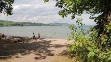 Walk on Lake Murten - oaks and pines line the beach