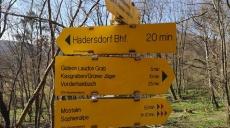 Wandern im Wienerwald – unsere Tour zur Mostalm