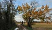 Staranzano - Bike Tour in the Nature Reserve Foce dell`Isonzo