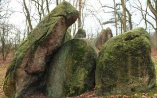 Visit to the Visbek Bride - Street of Megalithic Culture