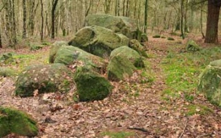 The street of Megalithic Culture - Monument Hohe Steine at Visbek