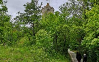 Another hike - this time to Saaleck Castle
