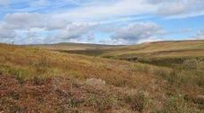 Longdendale Trail - hike up to the moor heights