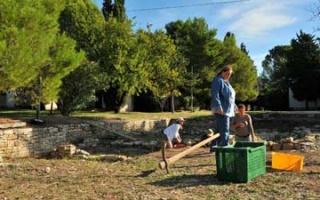 Excavations in Siculi - Magna Grecia Part 2